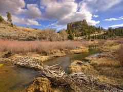 Trout Creek Beaver Dam (Dave Arnold Photo) Tags: pictures usa mountain water colo creek canon river us photo colorado image photos dam arnold picture meadow pic images beaver photograph co beaverdam troutcreek davearnold davearnoldphoto davearnoldphotocom