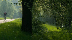 springtime commute (beeldmark) Tags: holland netherlands dutch bicycle landscape geotagged cycling countryside spring europa europe utrecht cyclist nederland commute lente fietsen springtime nieuwegein fiets landschap fietser platteland voorjaar bicyclecommute woonwerk lentegroen k10d beeldmark woonwerkgenot geo:lat=52060884 geo:lon=508753