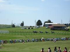 DSC07033 (ryeamans525) Tags: friends uva horserace foxfield