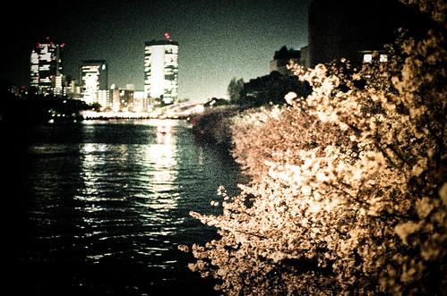 OR0904170032 : Sakura2009 #62