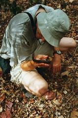 Chris and the Millipede (wallygrom) Tags: africa madagascar millipede chriswood millipedes giantmillipede giantafricanmillipede ankarana diegosuarez antsiranana archispirostreptusgigas chongololo ankarananationalpark
