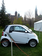 Smart Cars on grass.