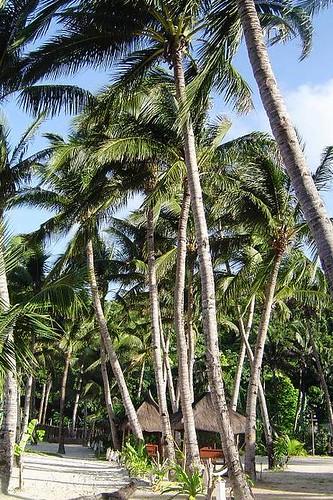 Boracay長灘島-3