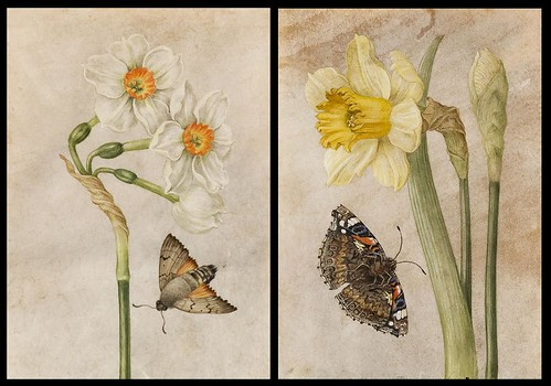 by (circle of) Jacques-Antoine-Marie Lemoine (late 18th cent.) tempera on parchment