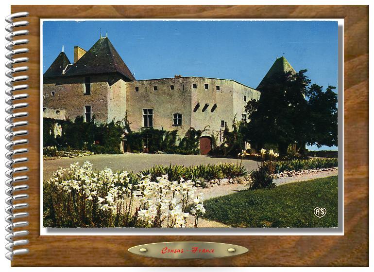 Château de La ROCHE-Les-AIGUEPERSE  (Puy-de-Dôme)