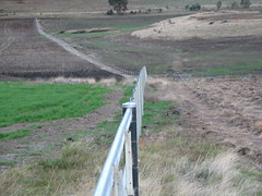 'How straight is that' submitted by Tracy Wilson (Waratah Fencing Products - Photo Gallery) Tags: rural fence fencing waratah