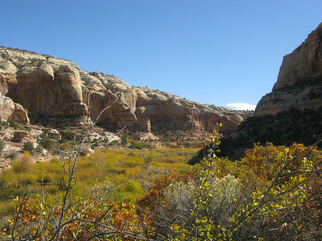 way to Lower Calf Creek Falls