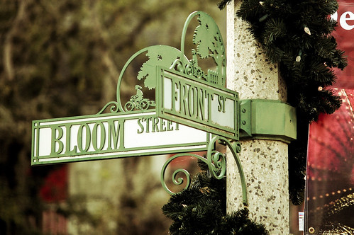 bloom street
