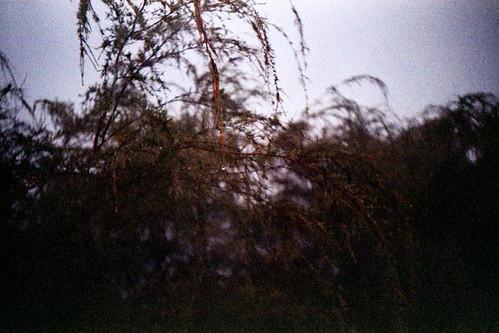 Bkt-Tabur028