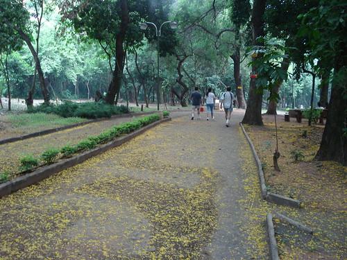 Asunción, Capital del Paraguay_Fotografías