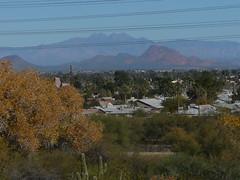 Views of the Valley 3 (alist) Tags: phoenix garden botanical desert alicerobison