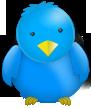 twitter branding