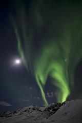 [フリー画像] [自然風景] [オーロラ] [空の風景] [夜景] [夜空の風景]      [フリー素材]