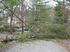 blocked road, no power