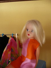 Party 6 (seejanerunning) Tags: doll blonde sindy