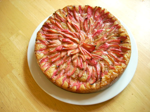 rhubarb orange cake