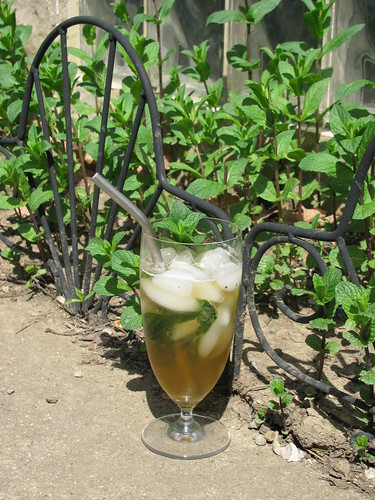 julep sipped through homemade stainless straw