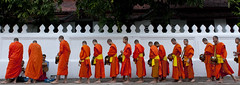 Early morning meal for the monks in Luang Prabang Laos (Eric Lafforgue) Tags: voyage travel test orange tourism asia feeding buddha buddhist monk monks asie laos lao asean luangprabang tourisme akha repas novice  7776 lafforgue laopeoplesdemocraticrepublic lpdr   asiedusudest socialistrepublic laosa    laosz  frenchcolonialempire rpubliquedmocratiquepopulairelao  laosas