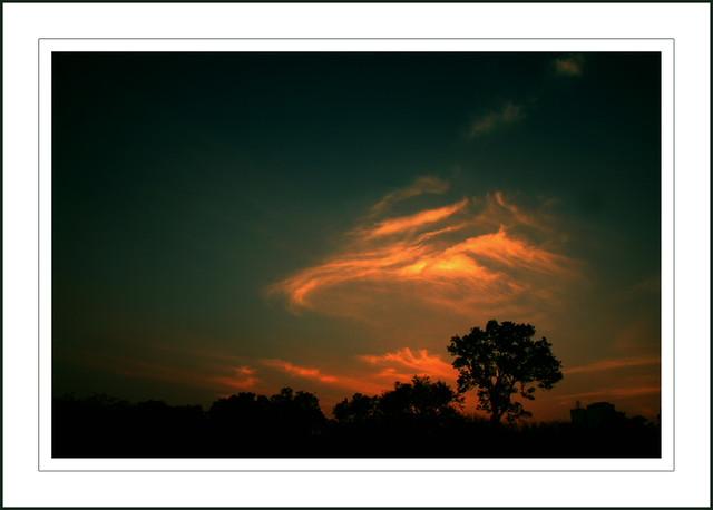 searing the skies...