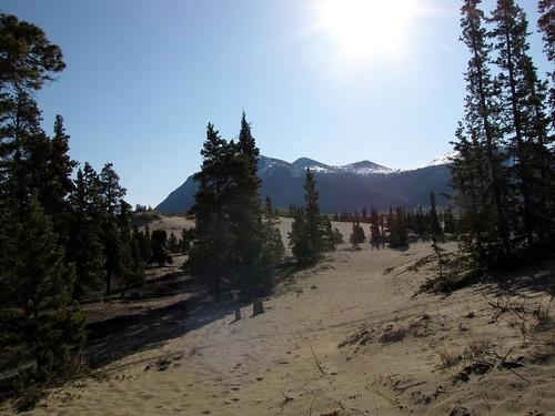 Alaskan Drive - Day 12
