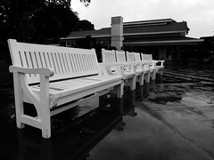 Punta Fuego 14 - Empty Benches (Daniel Y. Go) Tags: vacation bw lumix mono philippines panasonic tagaytay taal cliffhouse puntafuego lx3 lumixlx3 gettyimagesphilippinesq1