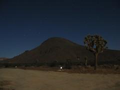 After Midnight (Mojave Desert) Tags: night desert joshuatree mojave