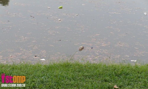 Man fishes at Sungei Pandan despite polluted waters
