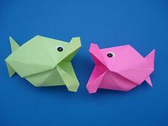 peixes beijadores