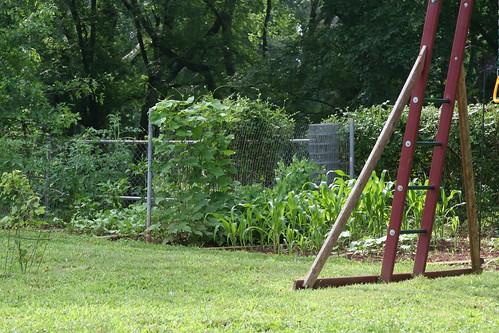 Vegetable garden '09