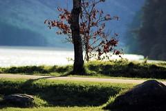 Upper Lake Glendalough (Explored) (murtphillips) Tags: explore glendalough april 2008 wicklow soe martinphillips absolutelystunningscapes murtphillips mygearandme blinkagain bestevergoldenartists creativephotocafe besteverdigitalphotography