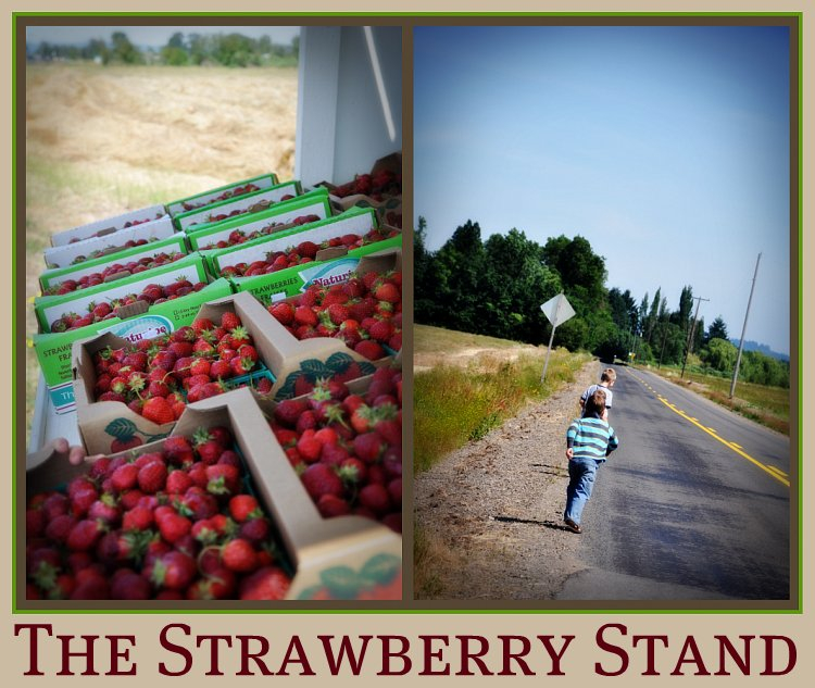 The Strawberry Stand