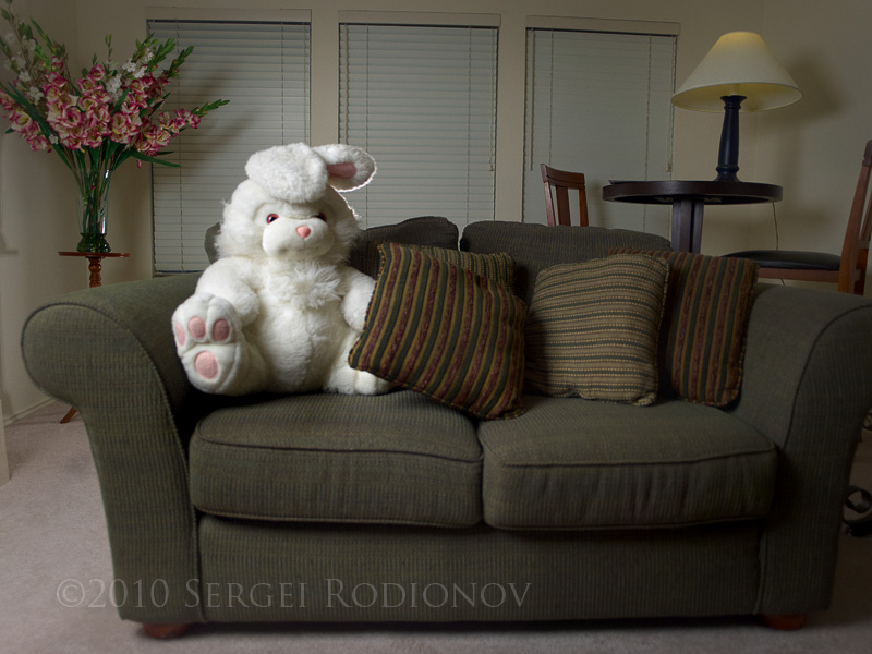 bunny light interior 8020