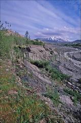 00113053 (wolfgangkaehler) Tags: usa mountain mountains landscape volcano landscapes washington scenery view hiking dest