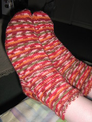 Cielebration socks for Lily