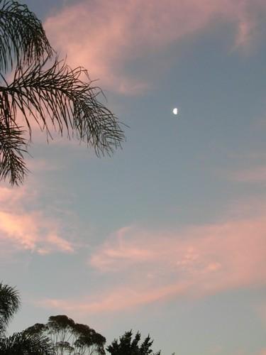 0901 evening