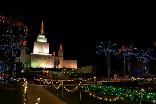 Christmas Lights & Lit Building At Oakland Hills Temple
