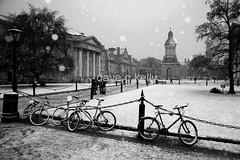 Winter Wonderland (Dave G Kelly) Tags: ireland winter dublin snow cold college bike canon campus bikes trinity 5d canon5d trinitycollegedublin tcd sigma2470mm