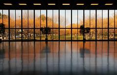 IIT Hermann (ken mccown) Tags: chicago architecture modernism som illinoisinstituteoftechnology skidmoreowingsmerrill groverhermannhall