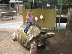 Happy on her tortoise