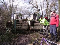Clarion ride around Hassocks 7