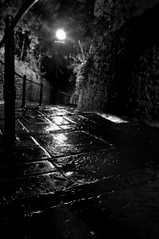 The Dean's Steps Llandaff (Leighton Roberts) Tags: longexposure portrait blur cold wet beautiful rain wales night stairs geotagged lights mono nikon streetlight mine moody dof path stones walk low memories cardiff creepy welsh railing leighton orton wfc llandaff cs3 araf nikond90 welshflickrcymru geo:lat=51495763 leightonroberts reallycoolphotos reallycoolphoto geo:lon=3219174