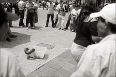 (Rai 幻の光) Tags: blackandwhite film 35mm canon guatemala negativescan canonet ql17 giii snakecharmer centralamerica parquecentral centroamerica guatemalacity adox ciudaddeguatemala chs100