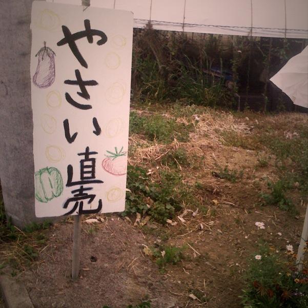 IMG_0060.JPG