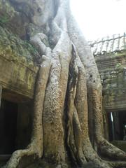 Angkor Wat - 136