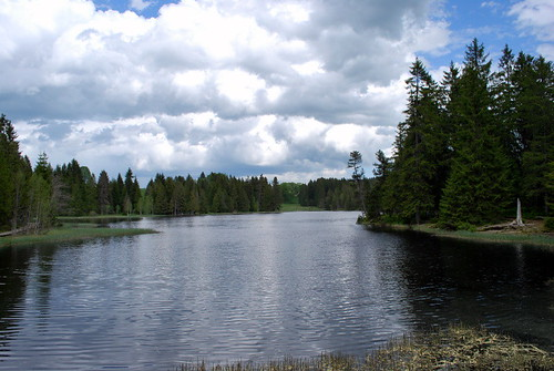 étang de la Gruère