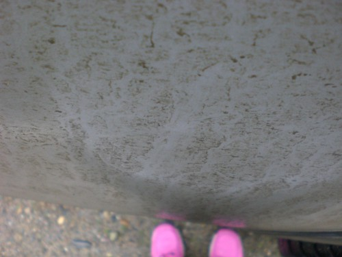 macro dof mud bokeh depthoffield pinkshoes chevycolorado muddytruck pinkhikingboots muddyrivulets