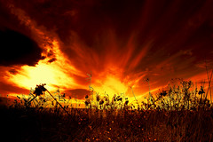 Tramonto in HDR (oraziopuccio) Tags: tramonto giallo cielo rosso hdr fuoco aplusphoto platinumheartaward colorsofthesoul oraziopuccio platinumpeaceaward flickrunitedaward soulaward thebestofcengizsqueezeme2groups