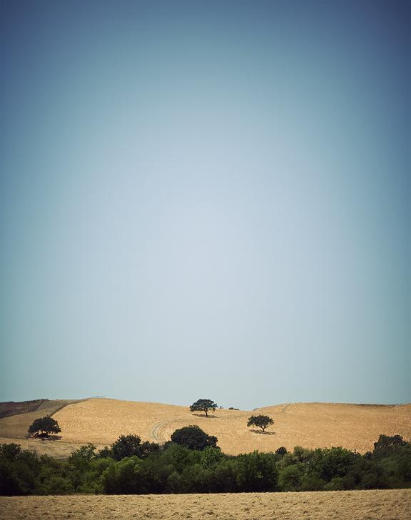 Los Olivos Scenery