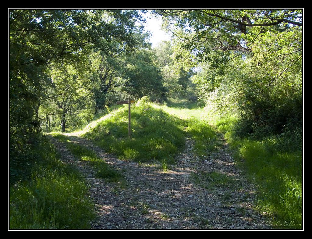 Saldise - Camino del Mortxe