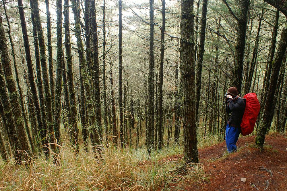 南湖大山day5-37 陡下710林道